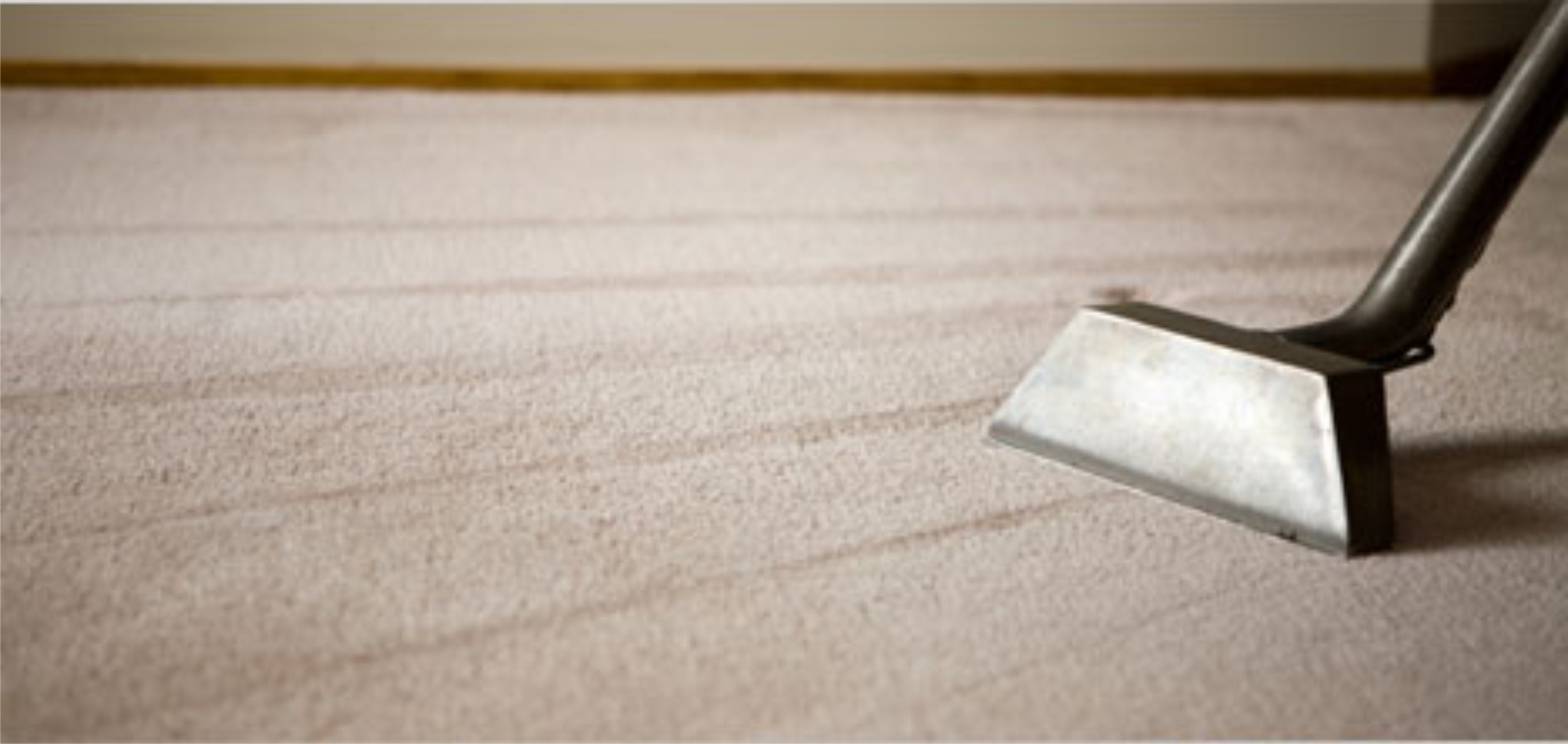 MainPic-Carpet-Cleaning21